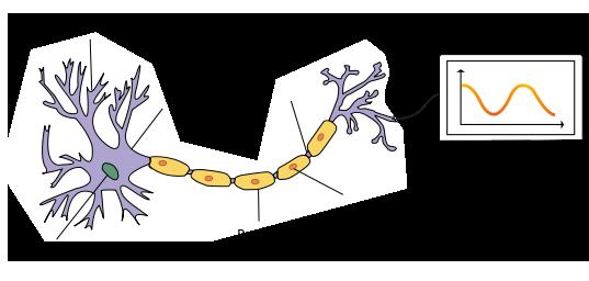 neurona-con-texto